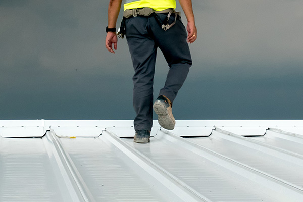 Roofing contractor walking metal roof
